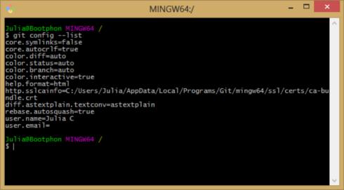 terminal_git_config_windows