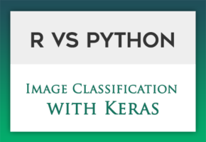 R vs Python: Image Classification with Keras | DataScience+